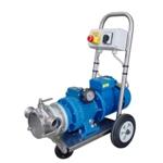 Pump T110
